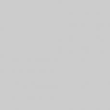 Противень GN1/1 Rational перфорированный, антипригарное покрытие